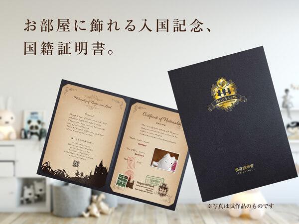 お部屋に飾れる入国記念、国籍証明書